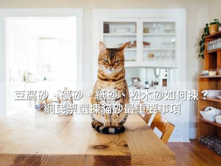 豆腐砂、礦砂、紙砂、松木砂如何揀?網民票選揀貓砂最重要事項