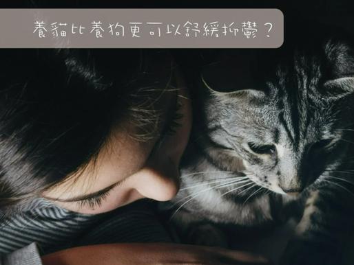 獨立的貓貓比活潑的狗,更可舒緩抑鬱症?