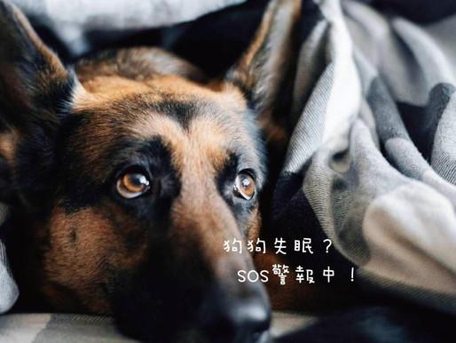 狗狗失眠了? 牠的身體正向你呼救!