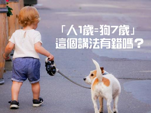 「人1歲=狗7歲」這個講法有錯嗎?