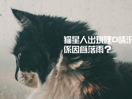 貓星人出現哩D情況,係因為落雨?