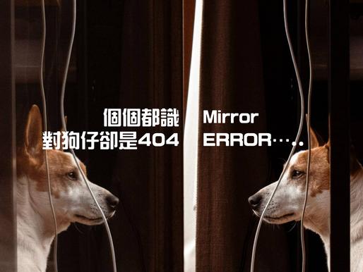 個個都識的Mirror,對狗仔卻是404 ERROR…..
