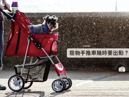 寵物手推車,幾時要出動?