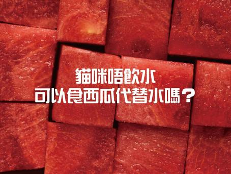 咪唔飲水,可以食西瓜代替水嗎?