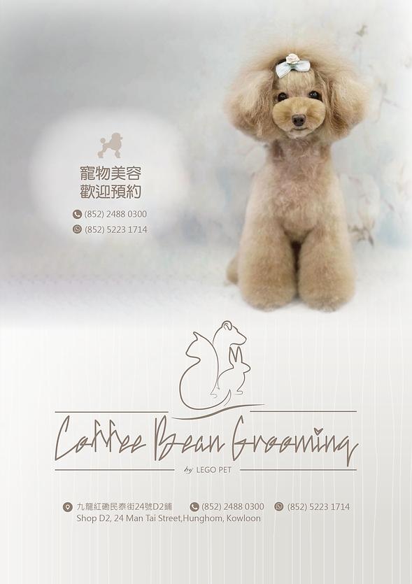 美容傳單 coffee bean grooming PET SALON-01.p