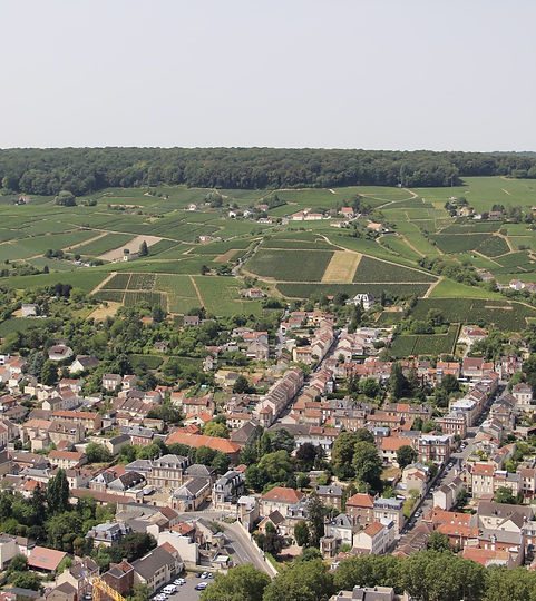 Uitzicht op Epernay vanuit de Ballon dep