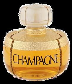 Parfum Yes Saint Laurent misbruik champa