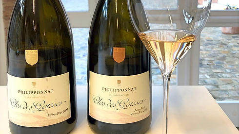 Philipponnat Clos des Goisses 2 flessen.