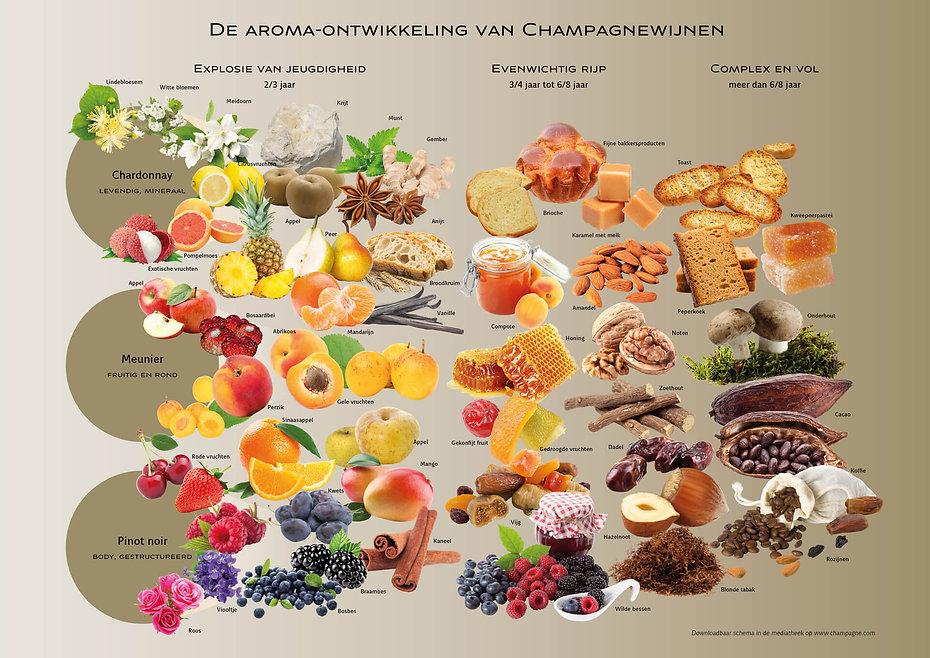 CC - aromakaart champagne.jpg