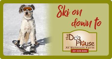 Ski On Down To