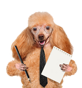 Dog holding pen and paper