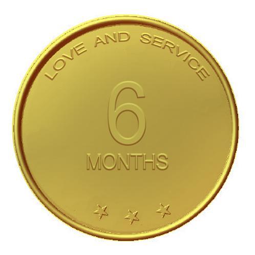 6 Months Chip