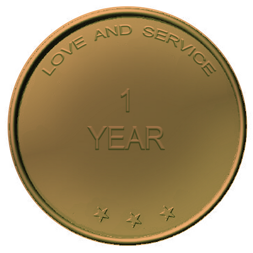 1 Year Chip