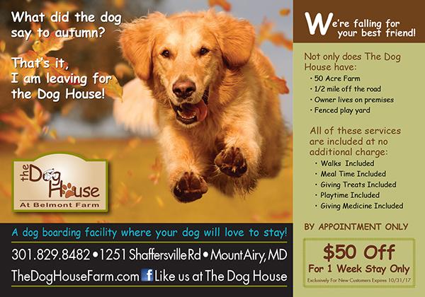 The Dog House Print Ads