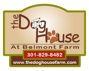A dog boarding facility where your dog will love to stay!