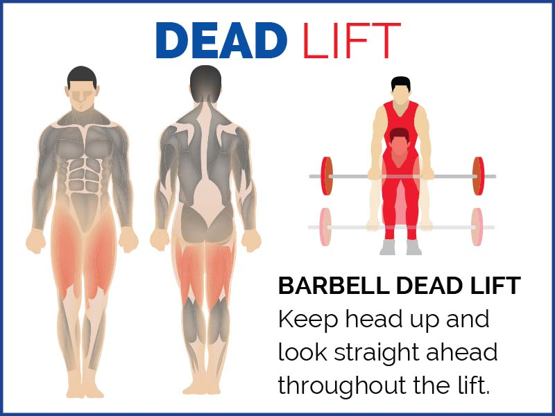 ISSA Dead Lift Infographic