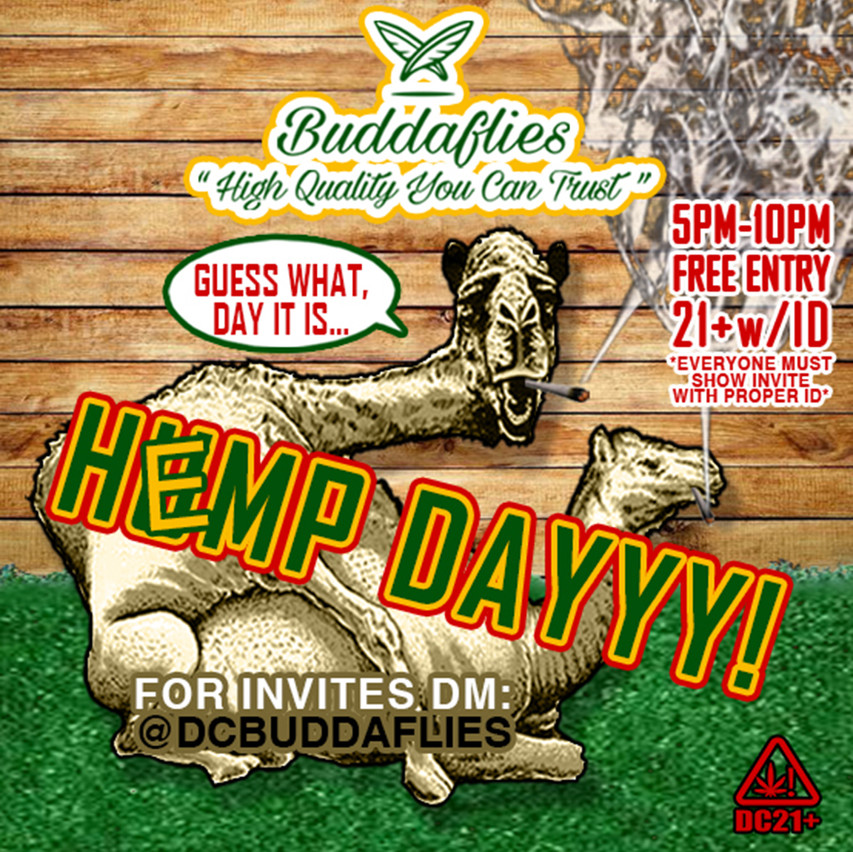 Buddaflies Instagram SQUARE HEMP DAY 011