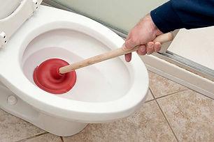 Desentupimentode vaso sanitário