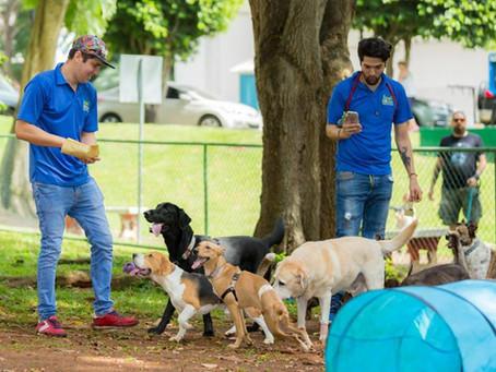 #WoofTips para Llevar a tu Perro al Parque