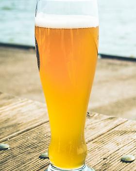 pilsner beer.png