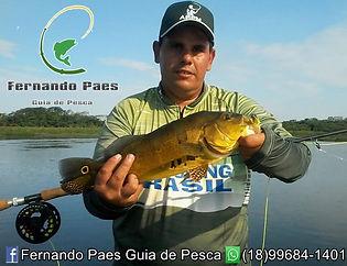 Fernando Paes.jpg