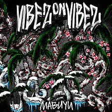 vibez-on-vibez-cover.jpg