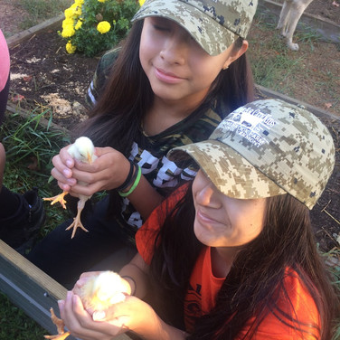 students playing chicks