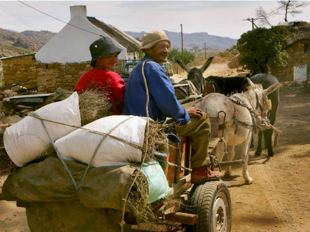 Africa-south-africa-farm-cart