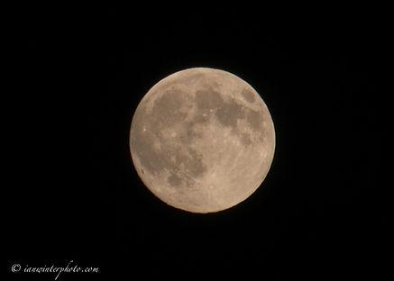 Big Moon-2.jpg