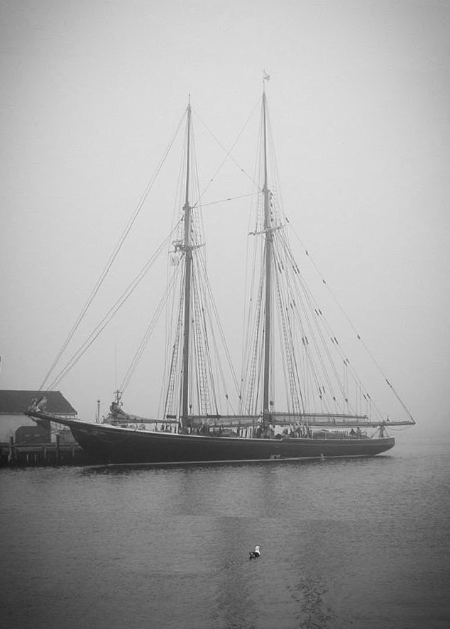 Bluenose II in Fog-3