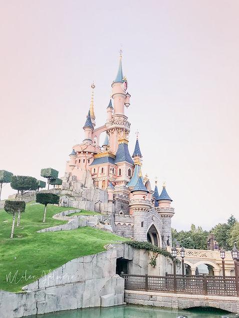 disney castle.jpg