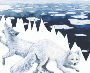 Habitat Degradation: Arctic Sea Ice Melt.  Rapid warming in the Arctic has caused sea ice extent to decline so quickly that species like the Arctic fox cannot adjust. 2015