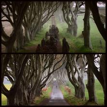 Game of Thrones - Dark Hedges