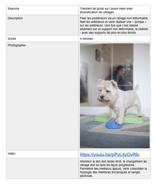 Capture d'écran 2021-06-16 à 14.37.43.pn