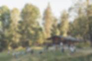 fircom_edited.jpg