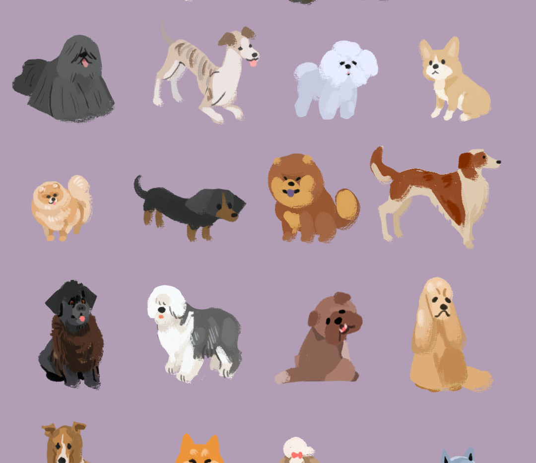 Shape and Color Dogs