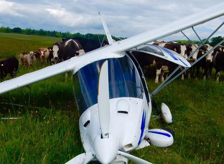 Seven tips for handling a forced landing without power.