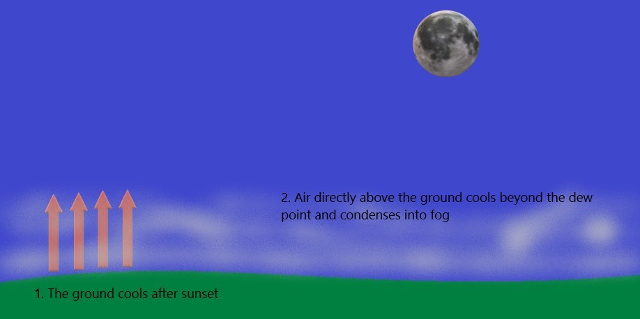 Radiation fog can form shortly after sunset.