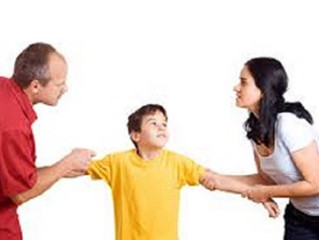 Parenting Plan--Who Speaks for the Child?