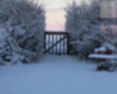 Vinter2.jpg