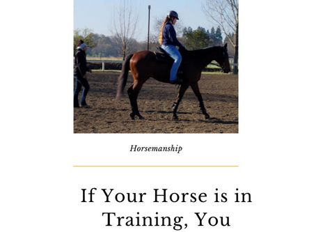 If Your Horse is in Training, You Should be too.