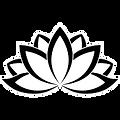 Lotus flower image.png