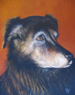 Lois-Dog-Painting-Pet-Portrait