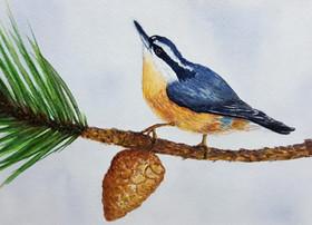 Bird-Pine-Cone-Branch-Painting.jpg