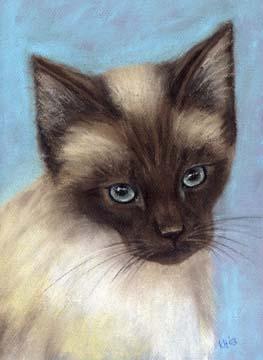 Little-Maxine-Siamese-Cat-Kitten-Paintin