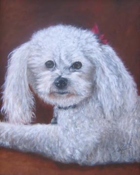Abby-White-Dog-Painting-Pet-Portrait