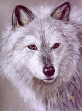 Gray-Wolf-Painting-Bust-Portrait.jpg