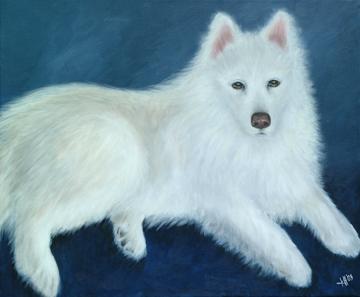 Shasta-White-Dog-Painting-Pet-Portrait