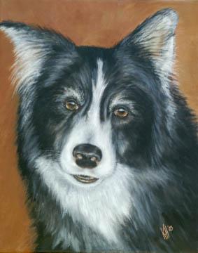 Casey-Collie-Dog-Painting-Pet-Portrait