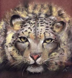 Intense-Wild-Feline-Painting-Facial-Port